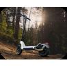 Speedtrott